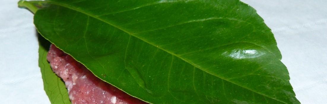 Polpette ai ferri tra foglie di limone martino ragusa - Foglie limone nere ...