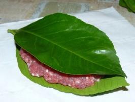 polpetta in foglie 1
