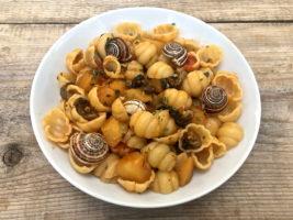 pasta_lumache